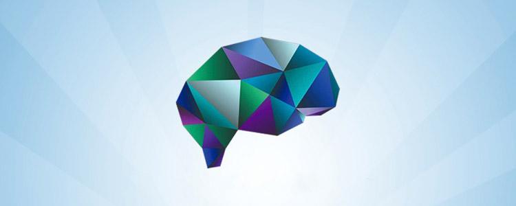 II Curso de Férias: Neurociência e Cognição
