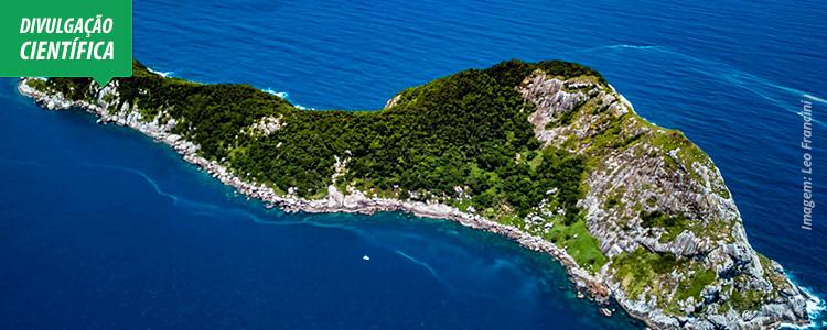 Cientistas identificam recife de coral em área improvável do litoral paulista