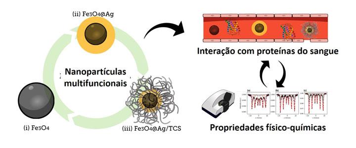 Grupo da UFABC desenvolve nanocomposto para tratar câncer de forma direcionada